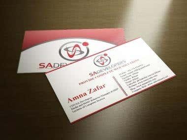 Business Card for SA Developers