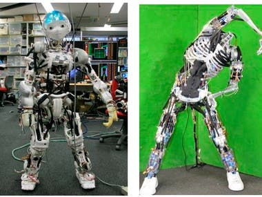 Humanoid soft robots and prosthetic