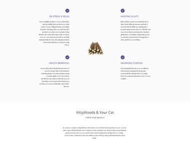 Content-Rewrite/Web-Redesign