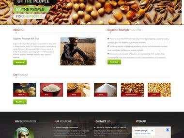 A website for import export business