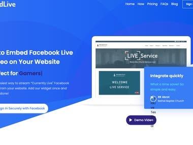 Complete Digital Marketing For VidLive.co