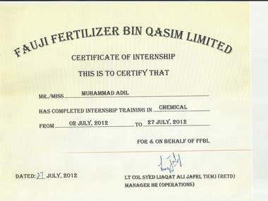 Internship @ Fauji Fertilizer Bin Qasim Limited