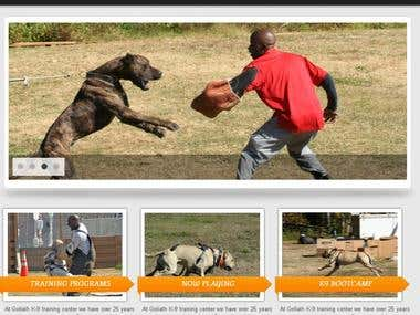 WordPress Website Development for Dog Training Center