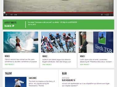 CMS, BLOG website using Wordpress