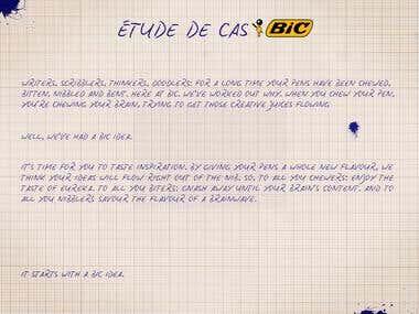 BIC campaign