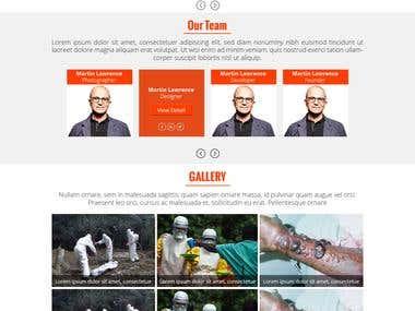 Website Design for EbolaVirusAmerica.com