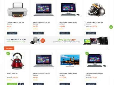 Website Design for Electronic eShop