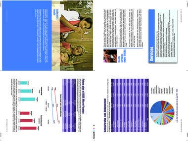 Graphic Design with Output File for Annual Report Inner