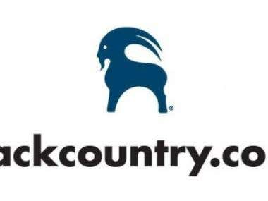 Backcountry.com Website Testing