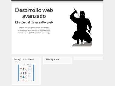 WebNinja.es