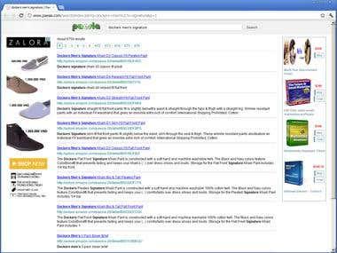 Paesia - Micro Search Engine