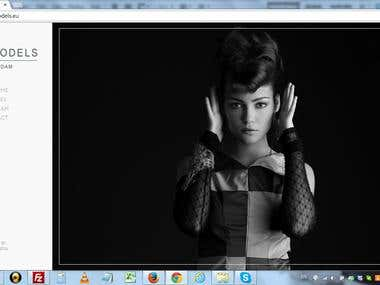 Website: Roco Models