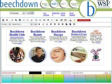 Website Backend Content Editing Design