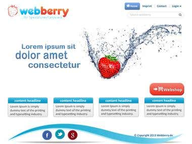 website mockup. webberry.de