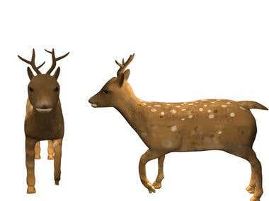deer (front ,back)
