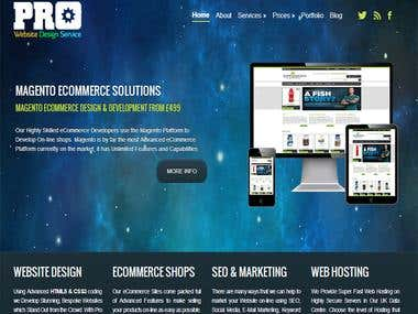 Pro Website Design Services