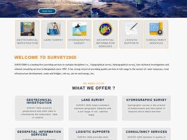Survey2000 ltd Website (Survey Company)