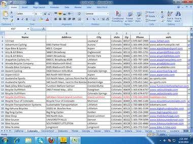Excel working sheet