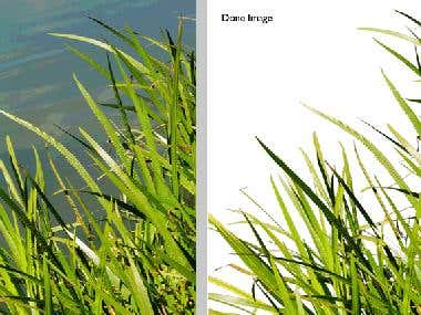 Clipping Paths/Deep-etchi, Masking (layer or alpha channel),