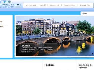 wordpress site development, designing and logo design
