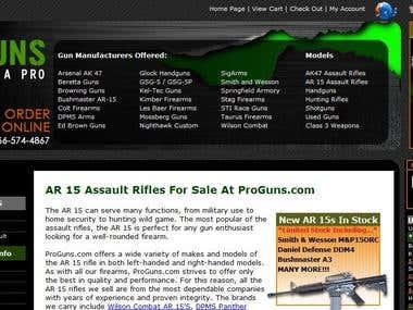 Sample Gun / Rifle site design