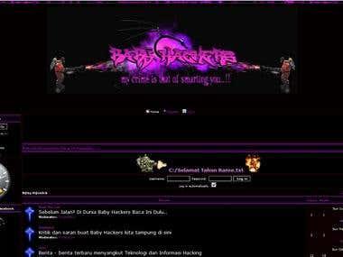 Web Design for http://babyhackers.secrets-stories.com