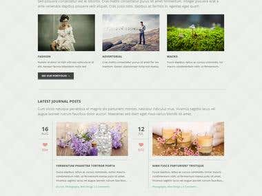 Website for World Class Photography