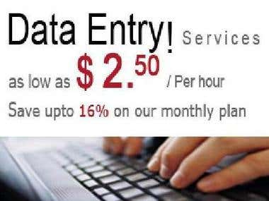 Let me work for you. Can do any work as a data entry operato
