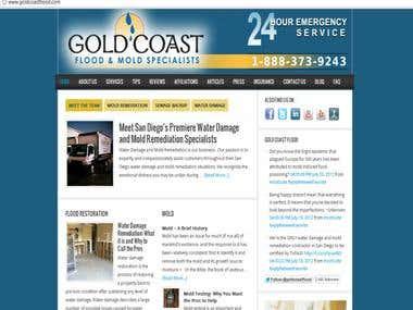 Gold Coast Flood & Mold Specialist WordPress Site