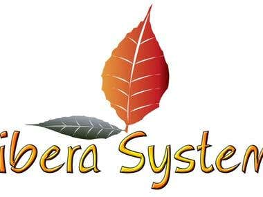 Libera Systems