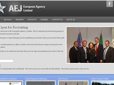 aejlimited.ie - Corporate Website