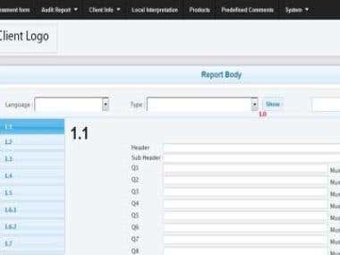 Audit Reporting System