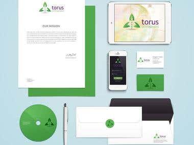 Torus Chiropractic Logo
