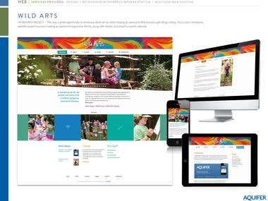 Responsive Websites 1