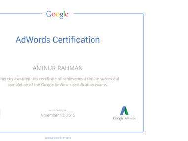 Certified Google Adwords Professional