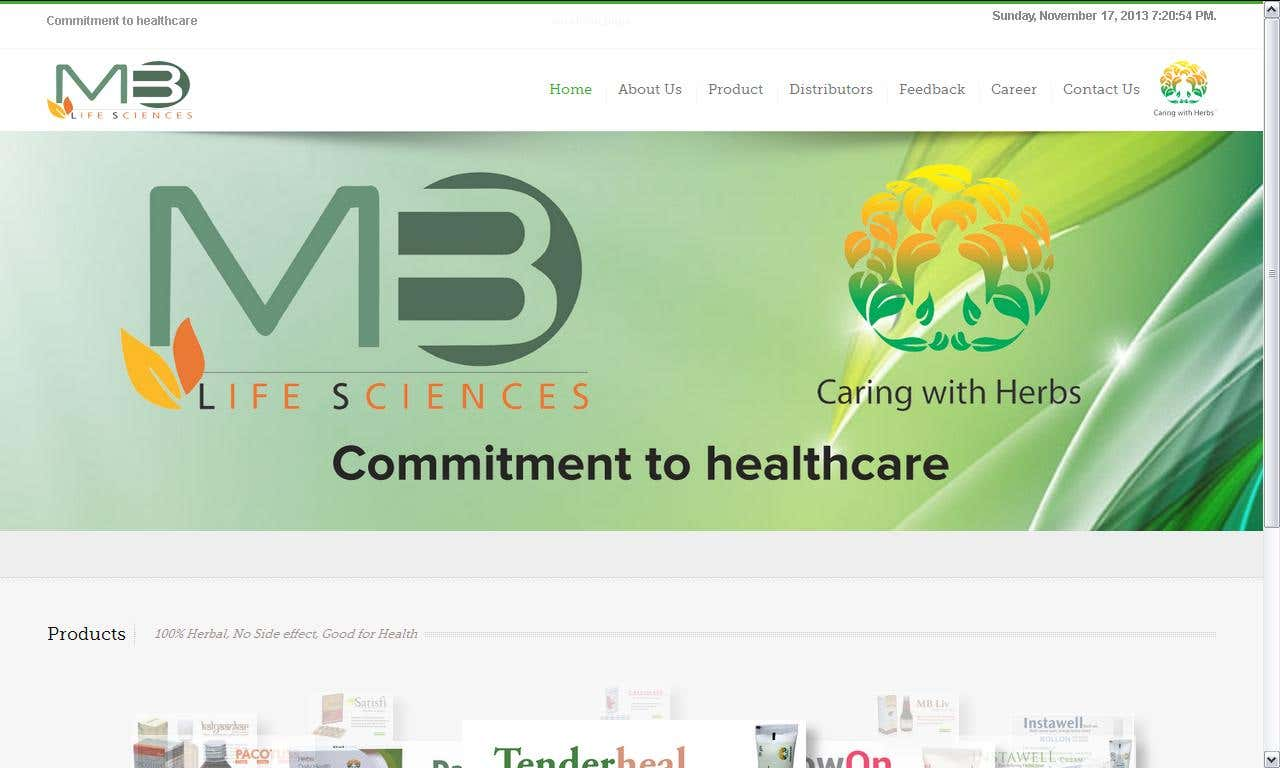Wordpress Responsive Website for Pharma Company with SEO