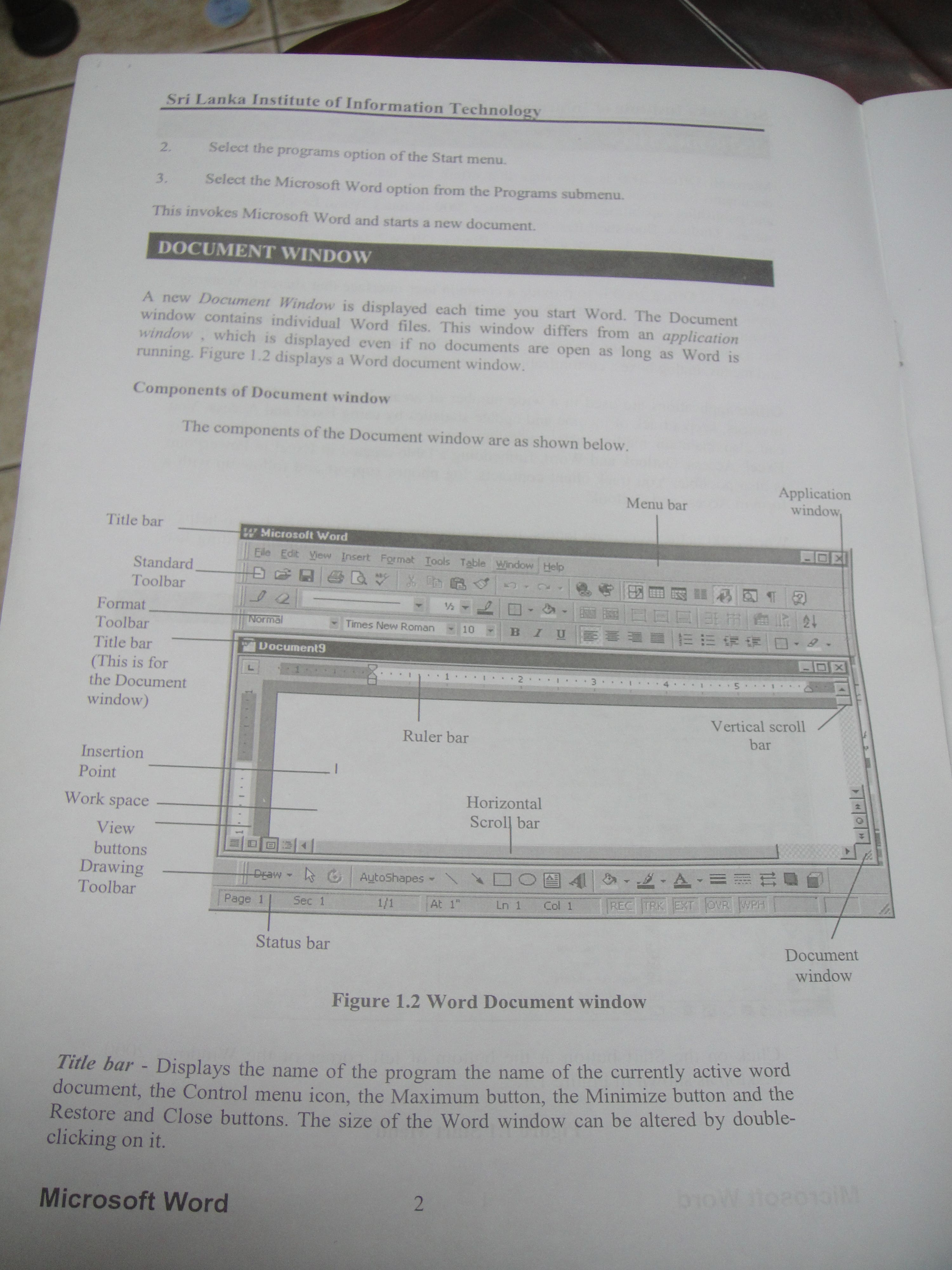 graphic design and ms word,excel