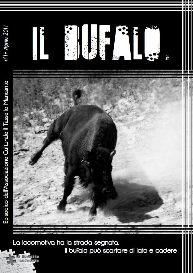 Il Bufalo - Magazine