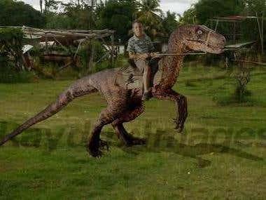 Dino Ridin'