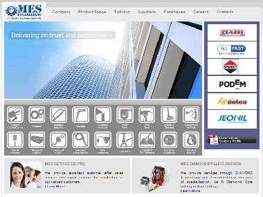 MES Engineering Pakistan, Website Development and Management