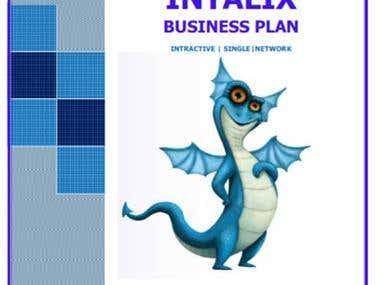 Business Plan for Social Networking Business