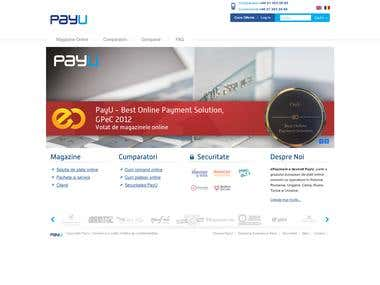 Online payment company site