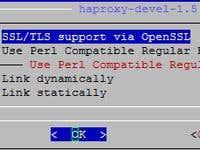 Installing HAProxy on pfSense | Freelancer