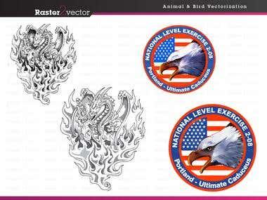 Raster to vector work