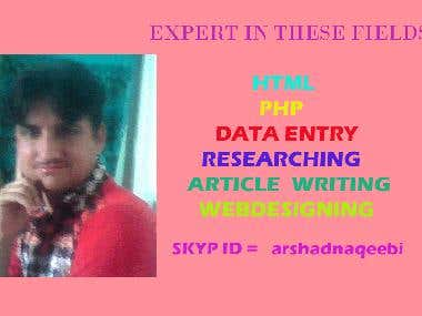 HTML , PHP , DATA ENTRY , ARTICLE WRITING , GOOGLE SEARCHIN