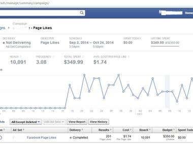 Facebook Marketing Snapshots