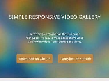 responsivevideogallery.com