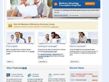 Website clients