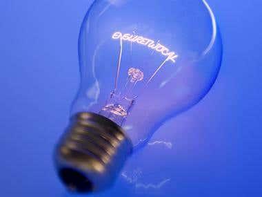 Ensuretwocal light bulb