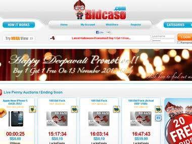 Development of penny auction website
